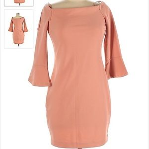 NWT Dynamite Dress with 3/4 Bell Sleeves 4 SPRING